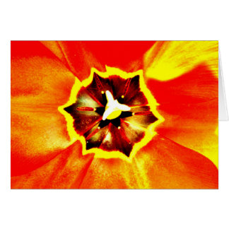 Flowers Greeting Cards