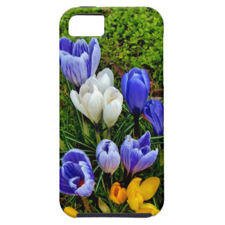 Flowers iPhone 5 Cases