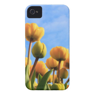 Flowers Case-Mate iPhone 4 Cases