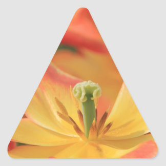 flowers colorful chic sassy girly glow sparkles triangle sticker