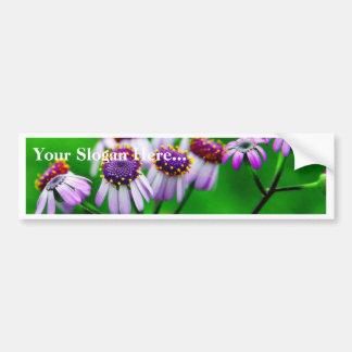 Flowers Daisies Daisy Bumper Sticker