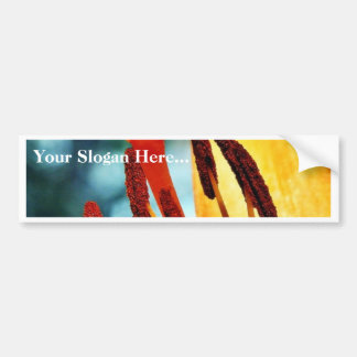Flowers Day Lily Lilies Car Bumper Sticker