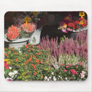 flowers displayed for sale in the Campo de' Mouse Pad