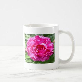 Flowers Feed Coffee Mugs
