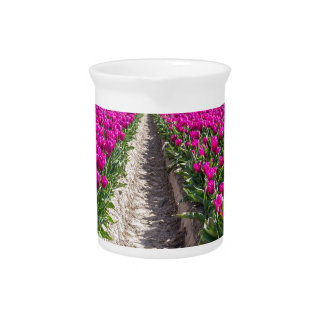 Flowers field with purple tulips and path drink pitcher
