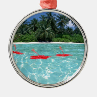 Flowers Floating in Water - Great Gift Idea Metal Ornament