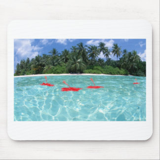 Flowers Floating in Water - Great Gift Idea Mouse Pad