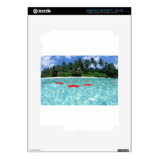 Flowers Floating in Water - Great Gift Idea iPad 3 Decal