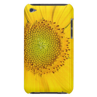 Flowers Floral Garden Blossom Photography iPod Touch Cover