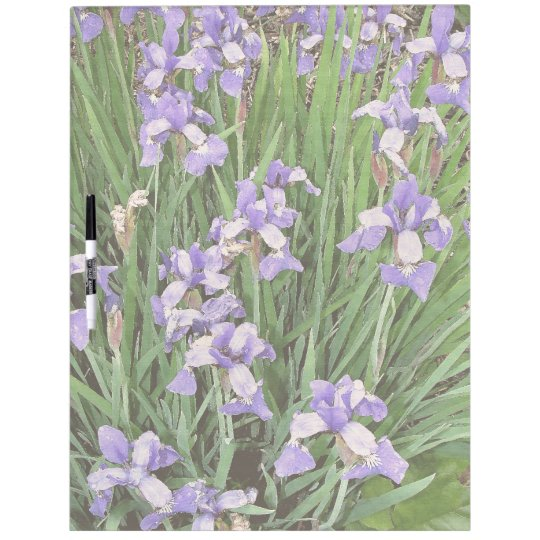 Flowers Floral Garden Blossoms Photography Dry Erase Board