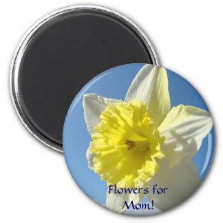 Flowers for Mom! magnet gift Spring Daffodils art