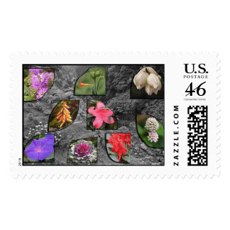 Flowers from Azores Postage