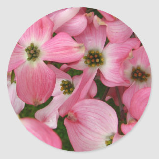 Flowers from Dogwood Classic Round Sticker