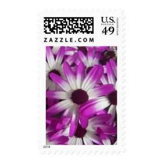 Flowers Galore Postage