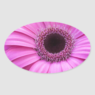 Flowers Gerbera  Roses Personalize Blossoms Oval Stickers