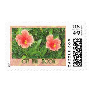 flowers get well soon postage