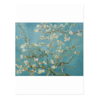 Flowers Gogh Branches Almond Blossoms Nature Postcard