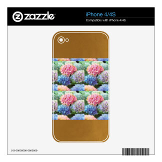 Flowers Gold Plated Stripes Template DIY add TXT iPhone 4 Skins