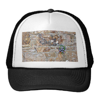 Flowers Growing From The Wall Trucker Hat