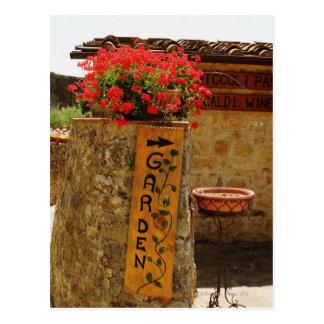 Flowers in a garden, Monteriggioni, Siena Postcard