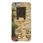 Flowers in a window box on a window sill, barely there iPhone 6 case