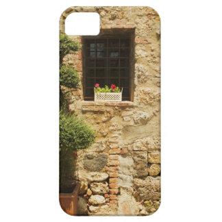 Flowers in a window box on a window sill, iPhone SE/5/5s case