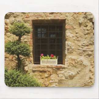 Flowers in a window box on a window sill, mouse pad
