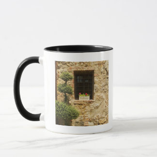 Flowers in a window box on a window sill, mug