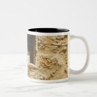 Flowers in a window box on a window sill, Two-Tone coffee mug
