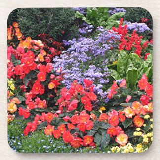 Flowers in Anchorage, Alaska, USA Beverage Coaster