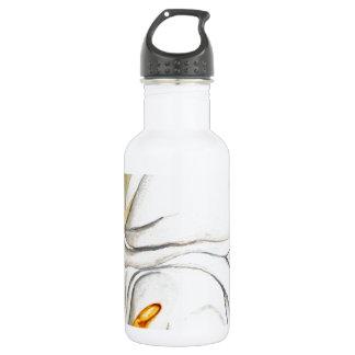 Flowers in Bloom Stainless Steel Water Bottle