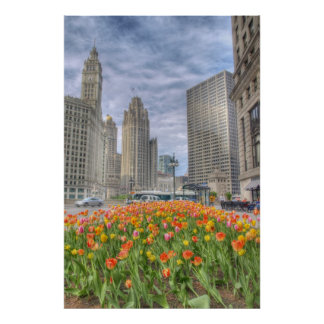 Flowers in Chicago Poster