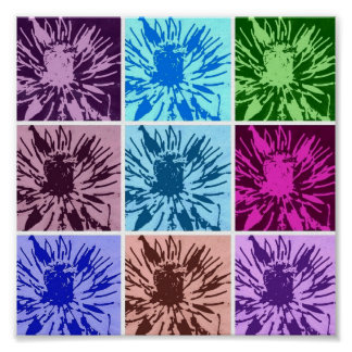 flowers in different colors poster