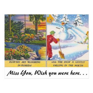 Flowers in Florida Postcard