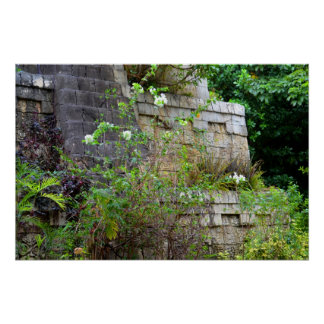 flowers in front of old stone wall print