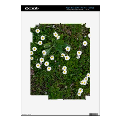 Flowers in Grass Skin For iPad 3