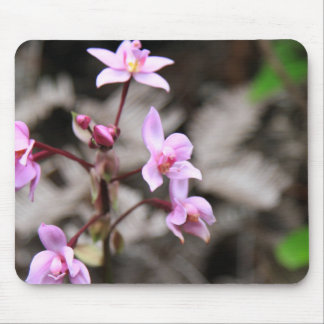 Flowers In Hawaii Mouse Pad