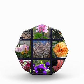 Flowers in Israel Acrylic Award