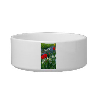 Flowers in May Cat Water Bowls