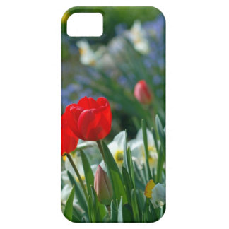 Flowers in May iPhone SE/5/5s Case