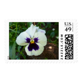 Flowers In Nature Postage Stamps