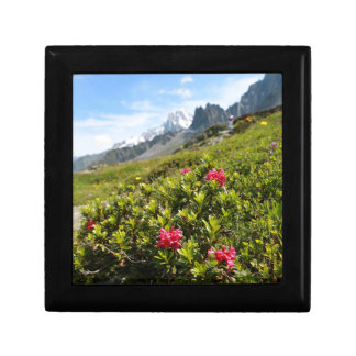 Flowers in the Alps - Beautiful! Gift Boxes