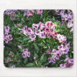 flowers in the garden mouse pad