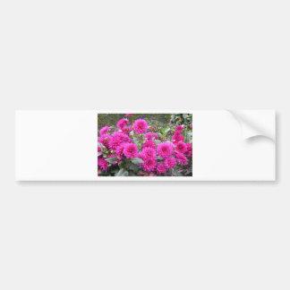 Flowers in the garden of Monet Bumper Sticker