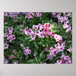 flowers in the garden print