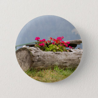 flowers in the tree trunk pinback button