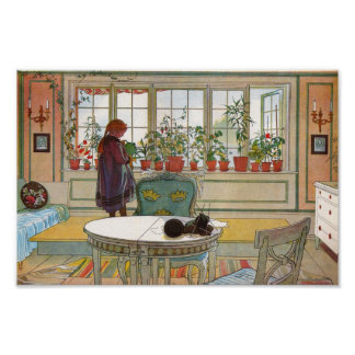 Flowers in the Window Box - Blomsterforstet Poster