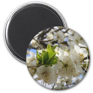 Flowers In White 2 Inch Round Magnet