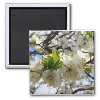 Flowers In White 2 Inch Square Magnet