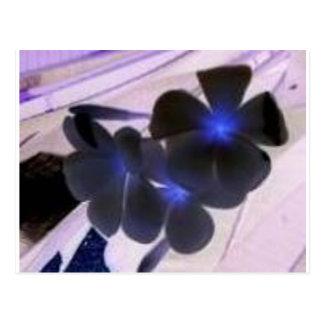 flowers invert postcard